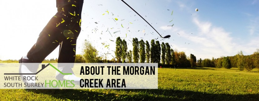 Morgan Creek Real Estate